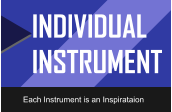 INDIVIDUAL INSTRUMENT Each Instrument is an Inspirataion